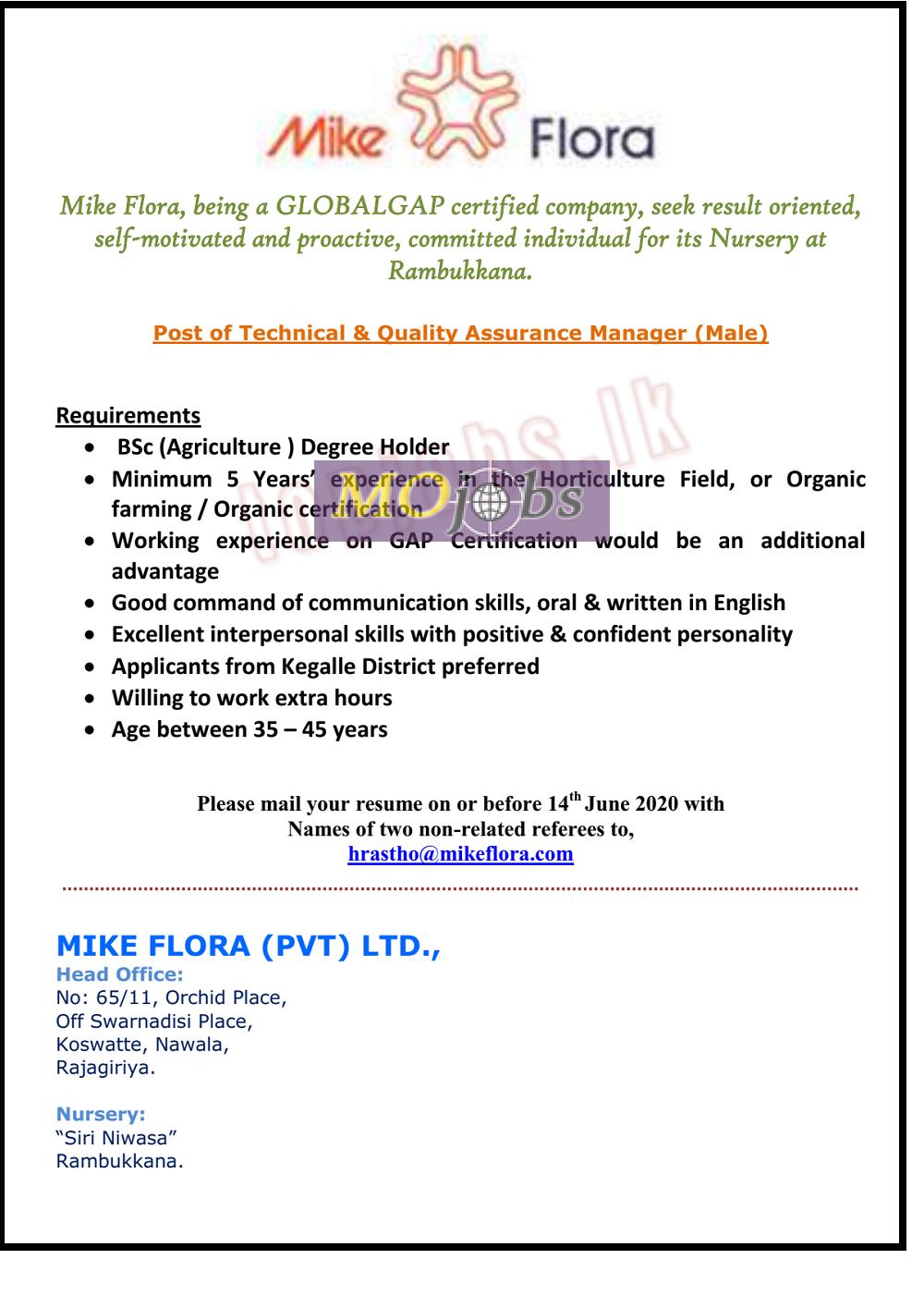 Jobs-in-Srilanka-MoJobs
